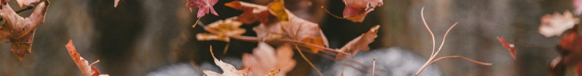 Herbstware in der Kleiderkammer